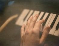 Melodica - foto Polina Ulianova